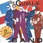 Album 15 years live on stage de The Cadillac Band