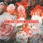 Album Septemper roses de The Romeos