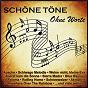 Compilation Schöne töne - ohne worte avec Orchester Ambros Seelos / Lordan / The Shadows / Orbison / Melson...