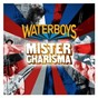 Album Mister charisma de The Waterboys
