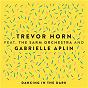 Album Dancing in the Dark (feat. The Sarm Orchestra and Gabrielle Aplin) de Trevor Horn