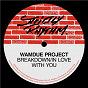 Album Breakdown / In Love With You de Wamdue Project