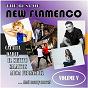 Compilation The best of new flamenco, vol. V avec David Sánchez / D A R / Calaitos / D Muneta / Al Son de la Calle...