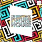 Compilation The definition of future house, vol. 13 avec Calligra, Jake Dile, the Trixx / Adaptiv, Andrew Belize, Felix Schorn / Belmond & Reason, JJL / Saladin / LNDR, Erik Stefler...