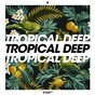 Compilation Tropical deep, vol. 8 avec Anton Ishutin / Calmani & Grey / Dayfox / Jovani / Aemilian...