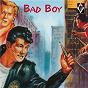 Compilation Bad boy avec Jimmy Patton / M Hawks / Mickey Hawks / B Mathews / Mickey Hawks & the Night Raiders...