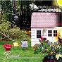 Album Katonah de Apollo Sunshine
