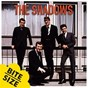 Album 5 bites: mini album - ep de The Shadows