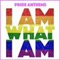 Compilation I am what i am and other pride anthems avec Boys Like Us / Gloria Gaynor / Dean Hazell / Sabrina / Kelly Marie...