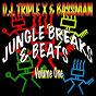 Album Jungle breaks & beats, vol. 1 de Bassman / DJ Triple X