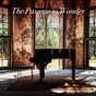 Compilation The passage to wonder avec Ferruccio Busoni / Arthur Friedheim / Ricardo Castro / Vladimir de Pachmann / Stefan Jeschko...