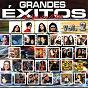 Compilation Grandes exitos a nuestro estilo, vol. 2 avec Pacheco Blues / Rod Levario / Interpuesto / Sur 16 / Liran' Roll...