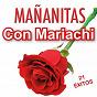 Compilation Mañanitas con mariachi avec Estudiantina / Mariachi México / Rondalla Voces de México / Paladines / Los Atrevidos...