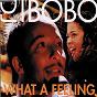 Album What a Feeling de Irène Cara / DJ Bobo & Irene Cara