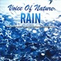 Album Voice of nature rain (relaxed music for mental balance and harmony) de Enver Baris